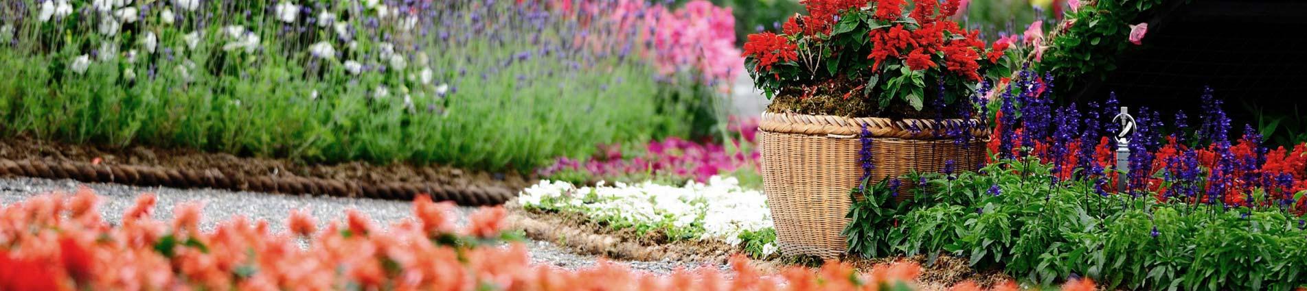 Pogotowie ogrodowe