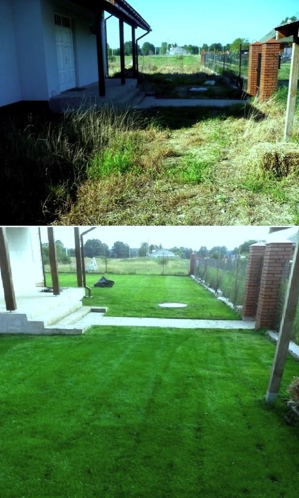 Trawnik z rolki Pruszków