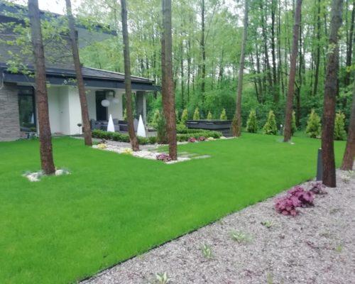 trawnik las
